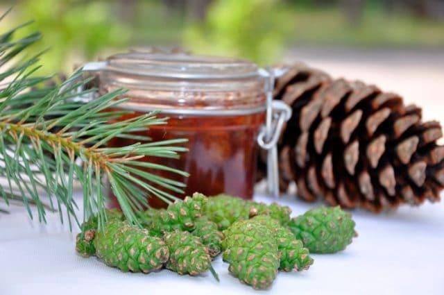 Научное обоснование данных качеств заключается в том, что только в составе сосновых шишек в достаточном количестве встречаются таины, биофлавоноиды, фитонциды и эфирные масла, которые надолго сохраняются в соцветиях в натуральном виде