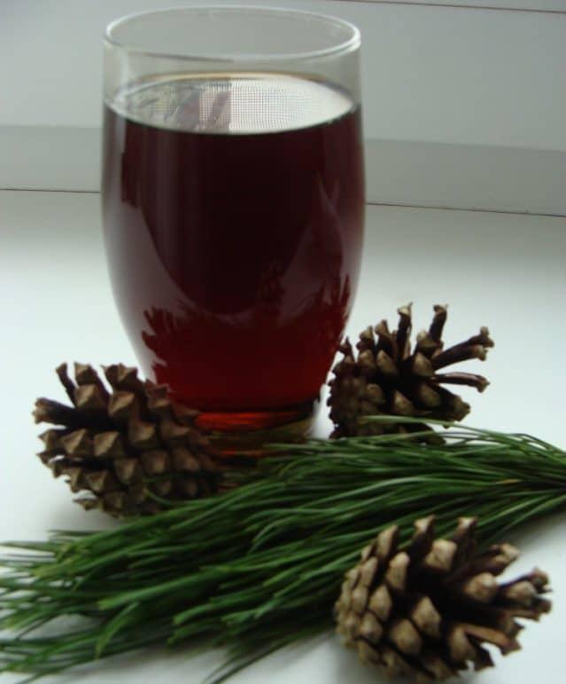 В процессе приготовления хвойные соцветия (кто-то предпочитает их нарезать, кто-то – оставлять целыми, это не принципиально) заливают водкой или спиртом и хранят в стеклянной таре