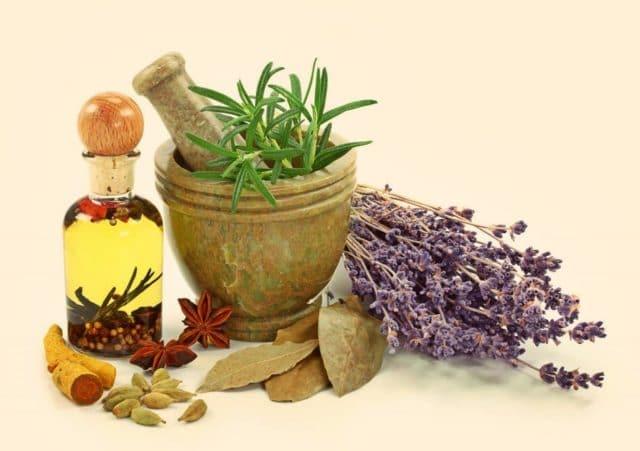 Лекарственные травы для лечения невроза