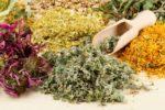 Какие травы понижают давление при гипертонии?