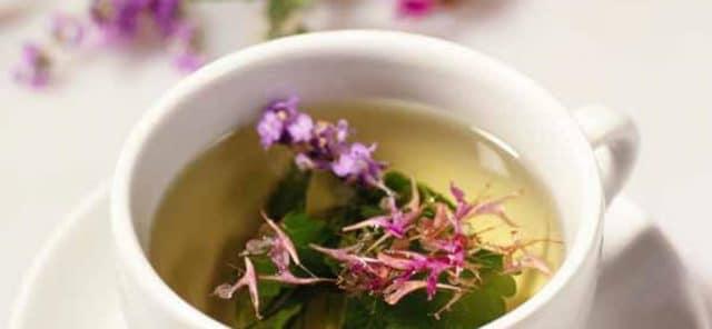 Иван-чай и давление вещи вполне совместимые, об этом знали еще древние целители и лекари