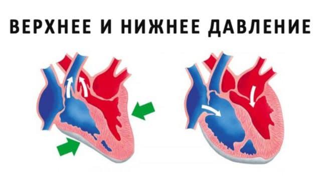 Изображение - Нормальное давление у ребенка 12 лет Normy-davleniya-u-detej-e1502864801608