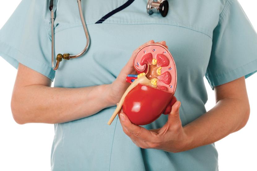 Симптомы и лечение почечной гипертонии