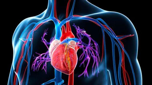 Проявляется длительно сохраняющимся увеличением давления крови в сосудистом бассейне легочной артерии