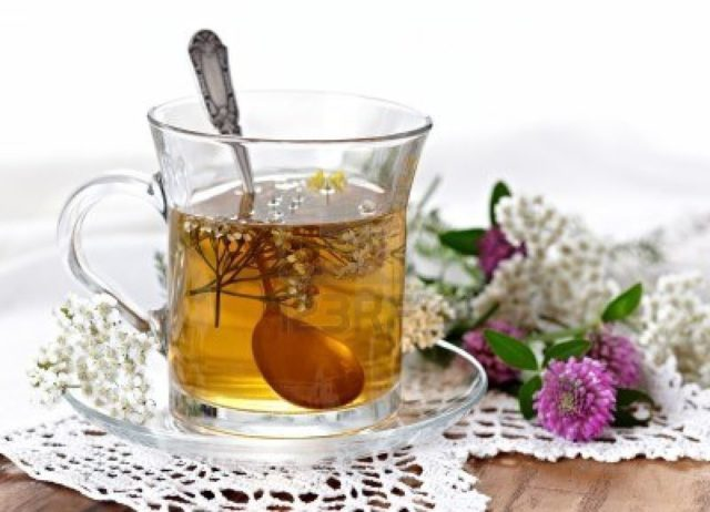 Заваривается лечебное средство аналогично обыкновенному чаю, пьется в теплом виде